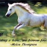 Quotes Horse Quotes Short Horse Quotes And Sayings Horse Jumping ...