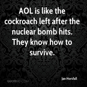 AOL is like the cockroach left after the nuclear bomb hits. They know ...