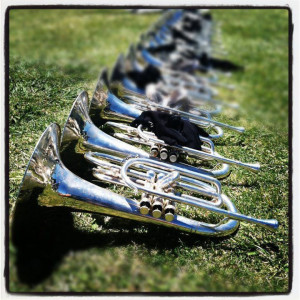 Mellophones basking in the sun. Sexy.