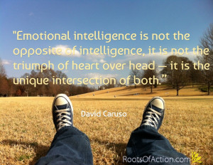 ... main pillars to supporting a healthy emotional intellect are these