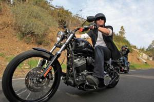 Harley Davidson 2011 Wallpapers