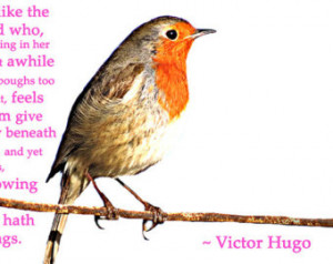 ... /Bird on Wire, Pink, White, Orange, Victor Hugo Quote/Picture Print