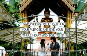 "... Purpose And Give Your Whole Heart And Soul To It "" ~ Buddhist Quotes"
