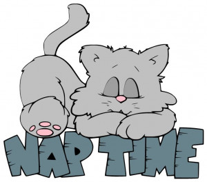 love a good nap now and then especially if I didnt sleep well the ...