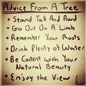 limb remember your roots drink plenty of water be content with your ...