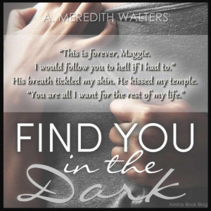 Find You in the Dark (Find You in the Dark, #1) by A. Meredith ...