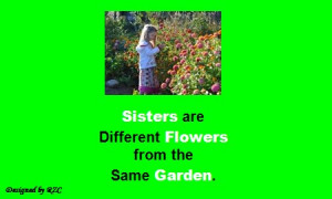 Quotes about sisters : Sisters are different flowers from the same ...