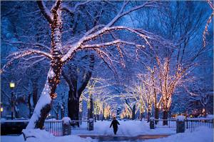christmas snow lights
