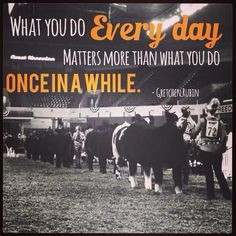 cattle quotes for pinterest showing livestock quotes showing livestock ...