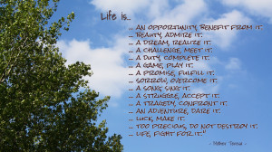 life-is-1920x1080-life-quote-wallpaper-121-1886352145.jpg