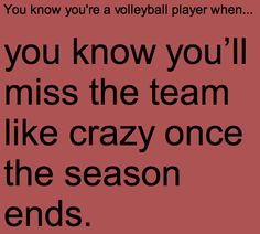 Volleyball Quotes!