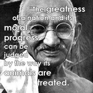 Famous Animal Rights Quotes