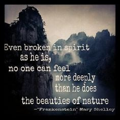 Mary Shelley's Frankenstein is amazing! A definite must read!! More