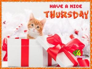 Have a Nice Thursday
