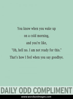 daily funny quotes humor quotesgram