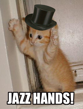jazz-hands-cat-cats-kitten-kitty-pic-picture-funny-lolcat-cute-fun ...