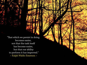 That which we persist in doing becomes easier, not that the risk ...