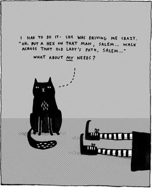 cat, cute, funny, witch