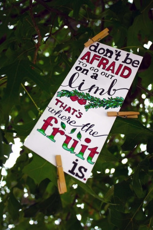 Don't be afraid to go out on a limb; that's where the fruit is.