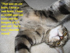 kitten quote charlie sheen 10,000 year old brain