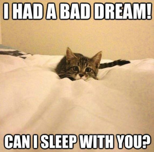 Bad dream!