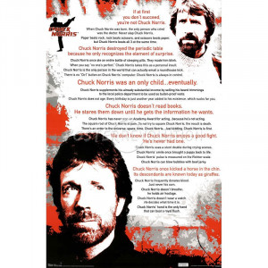 Chuck Norris Facts Poster
