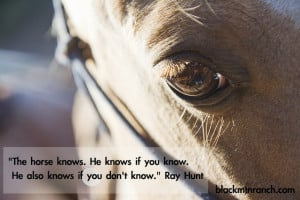 Horse Quotes And Cowgirl