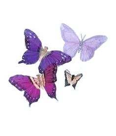 ... dealing with lupus when it comes to thinking, memory, and behavior