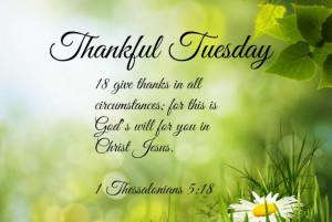 Thankful Tuesday/Martes de dar gracias
