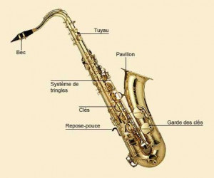 Saxophone Tenor Proel Save...