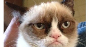 grumpy-cat-quotes-titanic-wallpaper-free-wallpaper-for-android-awesome ...
