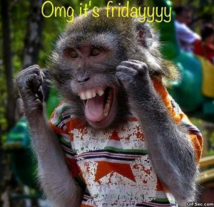 Its Friday - Funny Pictures, MEME and Funny GIF from GIFSec.com