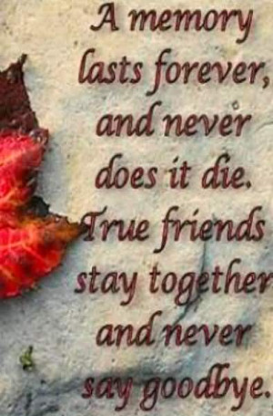 Memory Lasts Forever And Never Does It Die True Friends Stay ...