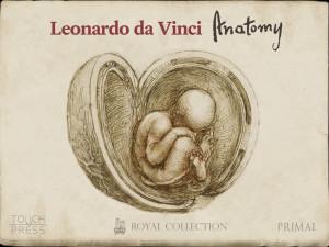 Leonardo-da-Vinci-Anatomy-for-iPad.jpg