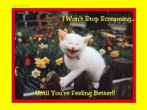 ... Stop Screaming,Until You're Feeling Better!! ~ Get Well Soon Quote