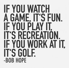If you watch a game, it's fun. If you play it, it's recreation. If ...
