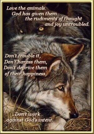 Lobos / Wolves