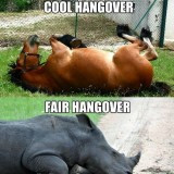 Funny Hangover MEME Jokes 2014