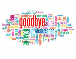 Wir sagen auf Wiedersehen!