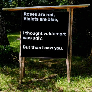 Roses Are Red Violets Are Blue I Thought Voidemort Was Ugly But When I