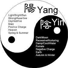 Yin Yang Quotes