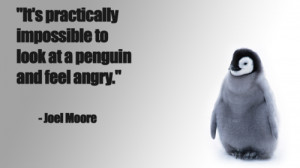 Funny Penguin Quotes and Sayings