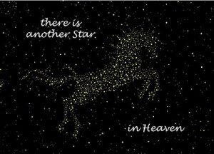 Outside says: There is another Star in Heaven