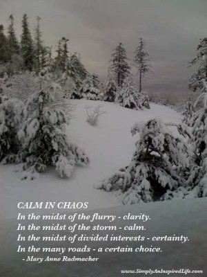 calm in chaos in the midst of the flurry clarity
