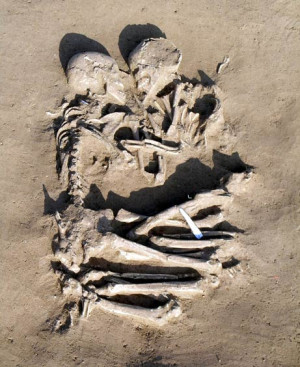 Photo of skeletons hugging