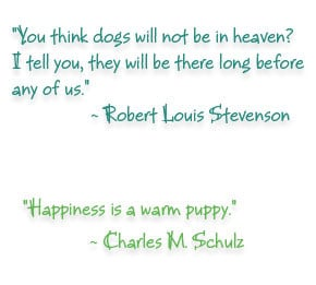 dogs our best friends and most faithful companions owning a dog is ...