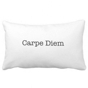 Carpe Diem Seize the Day Quote - Quotes Pillows