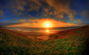 Beautiful sunset on horizon wallpaper download
