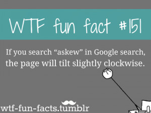 WTF fun fact - random Photo