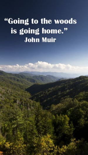 "woods is going home."" John Muir – Image of Great Smoky Mountains ..."